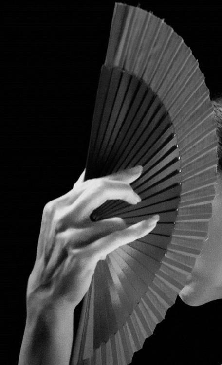 杨泉名言被爱人同志收藏到人生哲理