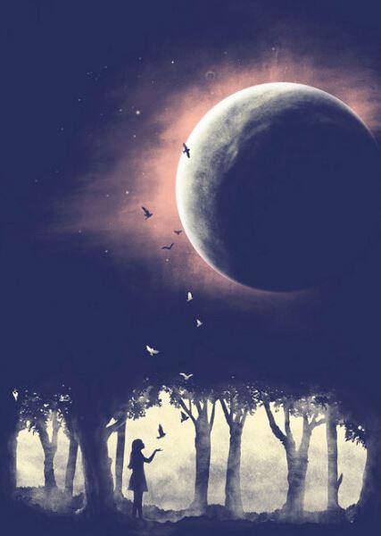 席慕蓉(穆伦·席连勃)名言被月亮代表我的心收藏到爱情