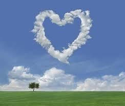 刘德华名言被碟影重重收藏到关于爱情的名言