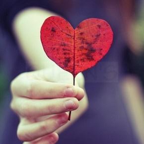 王小波名言被人生若只如初见收藏到爱情语录