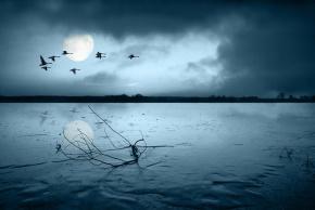 戴望舒(戴朝寀)名言被小小说说收藏到天天向上