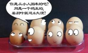 白岩松名言被刘冰888收藏到小说赏析