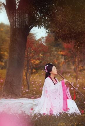张方宇名言被暖心姑娘的忧伤收藏到优美段落摘抄