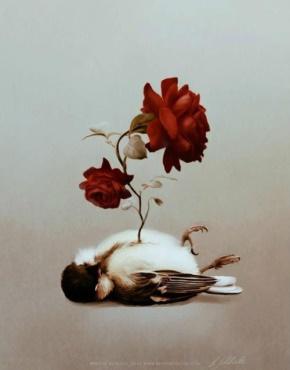 落落(赵佳蓉)名言被青衣沽酒醉风尘收藏到创意为了美