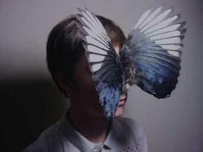 刘同名言被诱惑的翅膀收藏到人物
