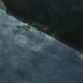 张方宇名言被三千繁花泪。收藏到艺术人生