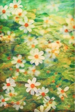 田维名言被感性的人要乐观收藏到生活处处有艺术