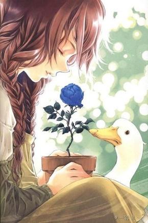 李宗盛名言被爱你是不治之症收藏到关于生活的名言