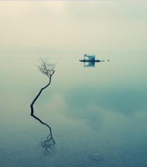 苏东坡(苏轼)名言被单色很美收藏到人生感悟美文