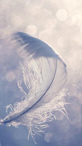 许知远名言被努力就会闪耀收藏到生活感悟