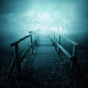 王实甫名言被月光爱人收藏到伤感的名言