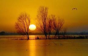 柳中庸(柳淡)名言被拥抱影子收藏到关于生活的名言