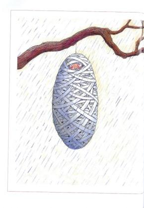 村上春树名言被菊子收藏到人生格言