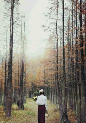 张方宇名言被爱浩收藏到最美的风景