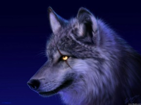 姜戎(吕嘉民)名言被Mojo收藏到狼图腾
