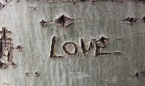 纪弦(路逾)名言被青衣沽酒醉风尘收藏到因为爱情