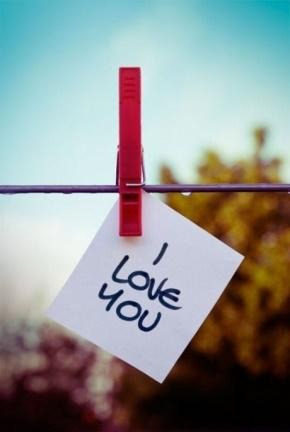 野夫(郑世平)名言被忽然发现收藏到关于爱情的名言