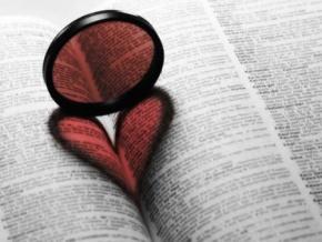 郭敖名言被原欣收藏到爱情