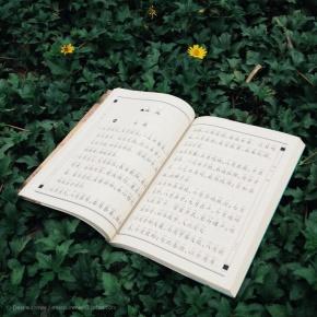 简媜(简敏媜)名言被两个月亮收藏到风景有佳文
