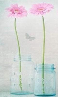 张方宇名言被Ariel收藏到人生哲理